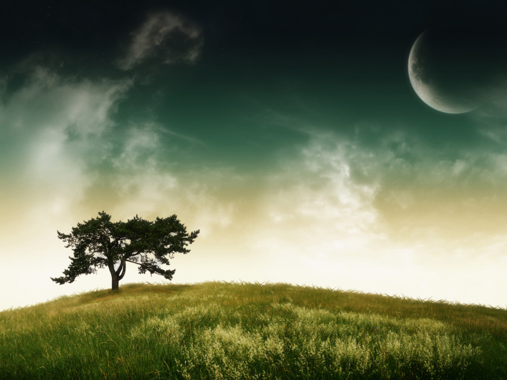Wallpapers-room_com___Serenity_Tree_by_nuaHs_1600x1200