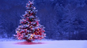 christmas-tree-hd-wallpapers-best-desktop-images-widescreen